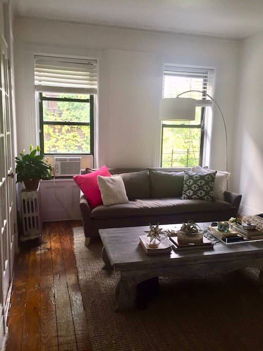 Bright and quiet living room with queen sleeper sofa