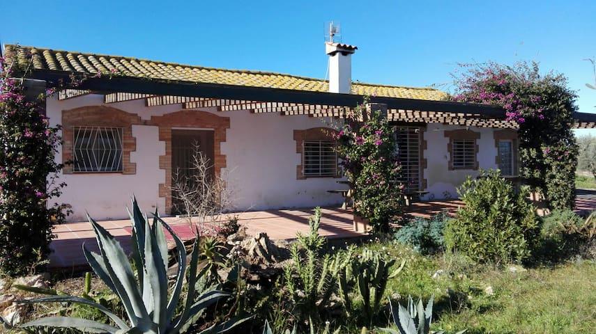 Casa rural al Delta de l´Ebre - L'Aldea - Дом