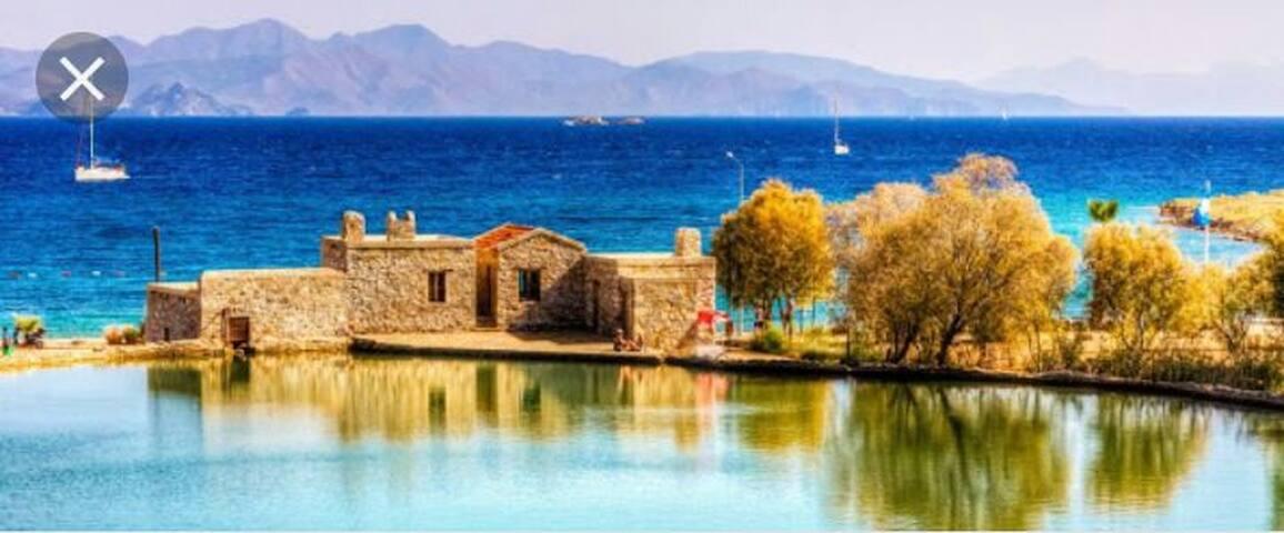 Muhteşem Deniz ve Orman Manzaralı & Geniş Balkonlu