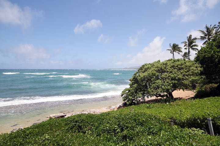 $130/nt April&May: 30 Steps to the Beach; Sleeps 4 - Kapaa - Stadswoning