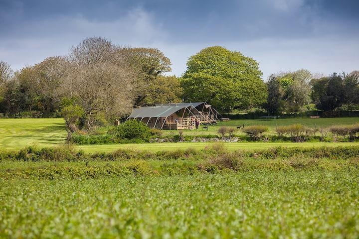 Primrose Farm Holidays Luxury Glamping - Tulip