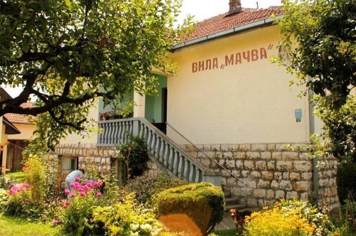 Apartmans  Vila ''Mačva''   Banja Koviljača /  A2