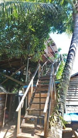 Ile Sainte Marie la cabane perchée dans les arbres