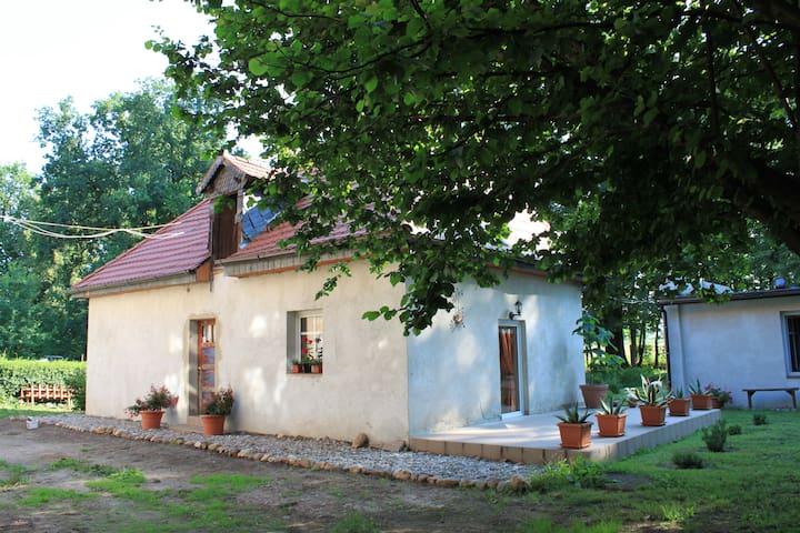 Pałac Heymanna - Stara Kuchnia - Ścibórz - Rumah Tamu