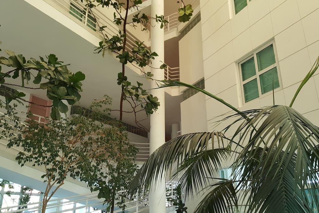 Hall de entrada (planta baja).