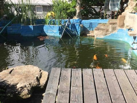 Steg zum Teich. Hier kann man sonnenbaden.