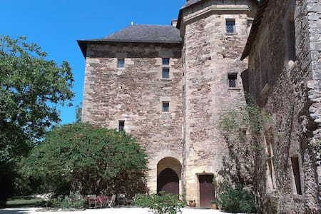 Castle in the garden of France - Hrad