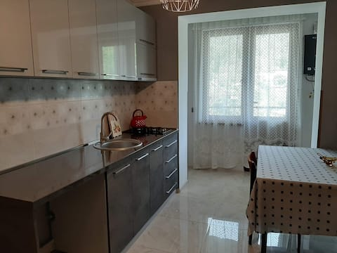 Clean and fully updated flat in Borjomi