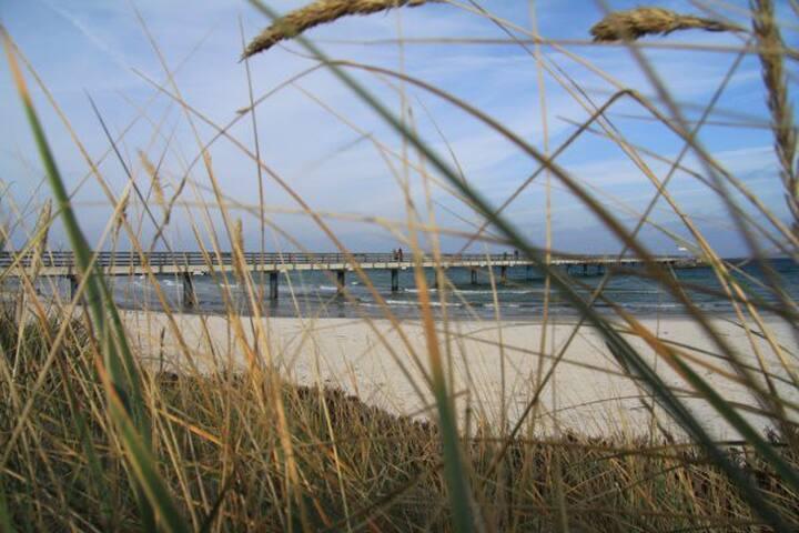 Schöne Fewo - nur 70 m entfernt vom Strand