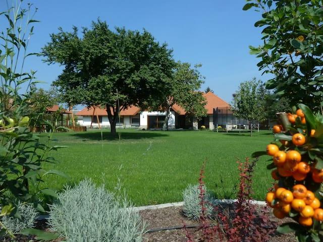 Spacious, new family house, 3 bedrooms, Poroszló