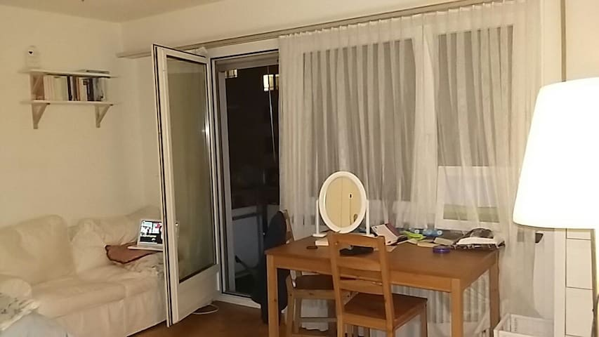 Sofa, desk and open balcony door (the flat is about 10 metres above ground)