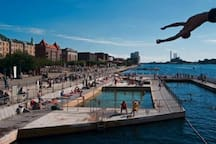Go for a swim in the harbor at Islands Brygge, just 10 min.by bike from the flat.
