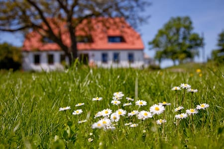 Gutshaus Ketelshagen - Putbus - Bed & Breakfast