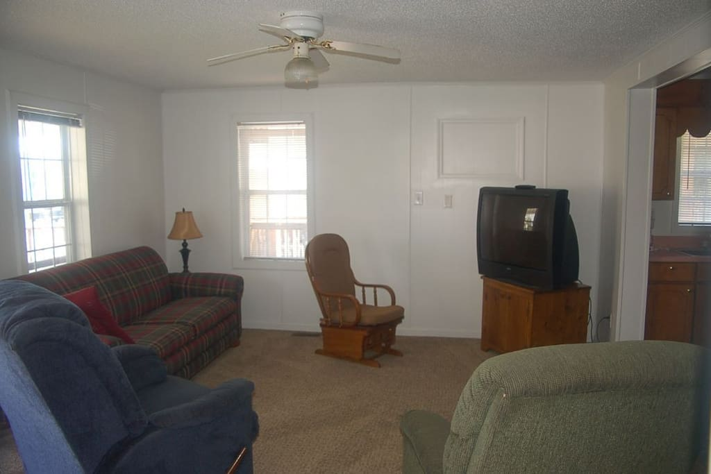 Couch,Furniture,Indoors,Room,Light Fixture