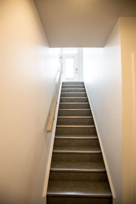 Stairs to basement suite