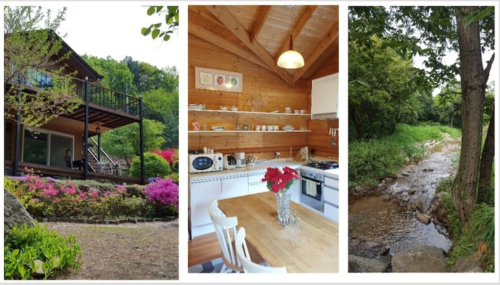 힐링과 방갈로, 개울이 있는 자연의 집  - tj의 4계절