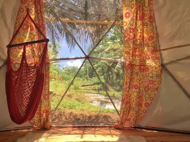 Alojamiento en Selva Lacandona