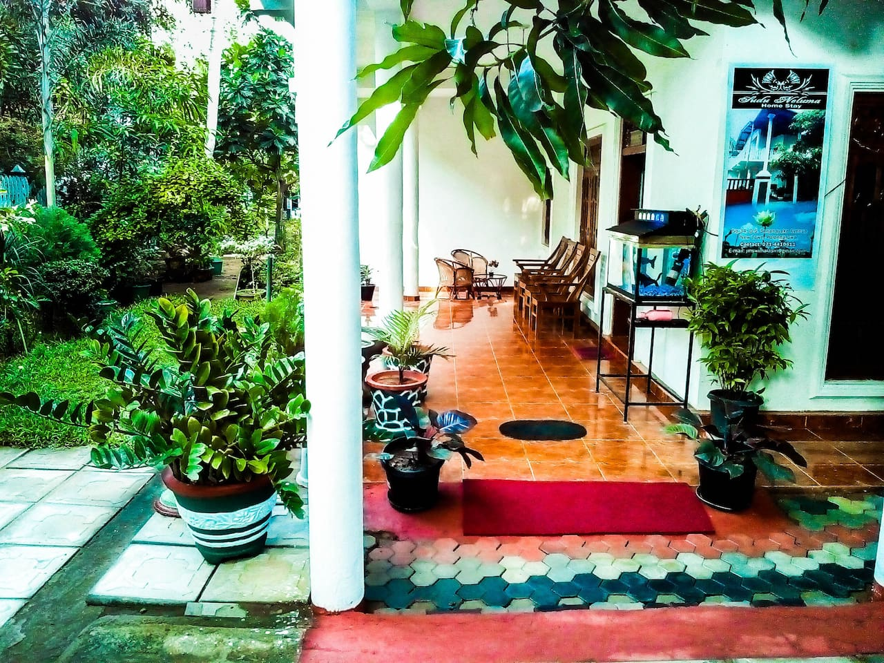 Sudu Neluma Homestay Tourist Lodge
