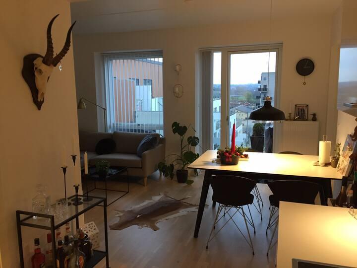 Penthouse i Aarhus