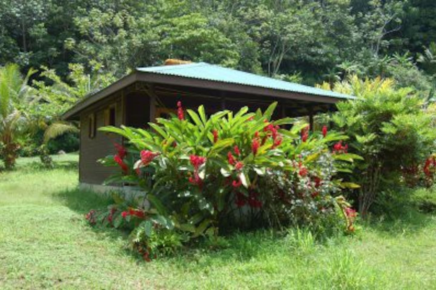 secluded self contained cottage