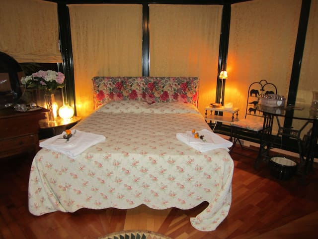 Beautiful penthause in downtown up to 5 guestes