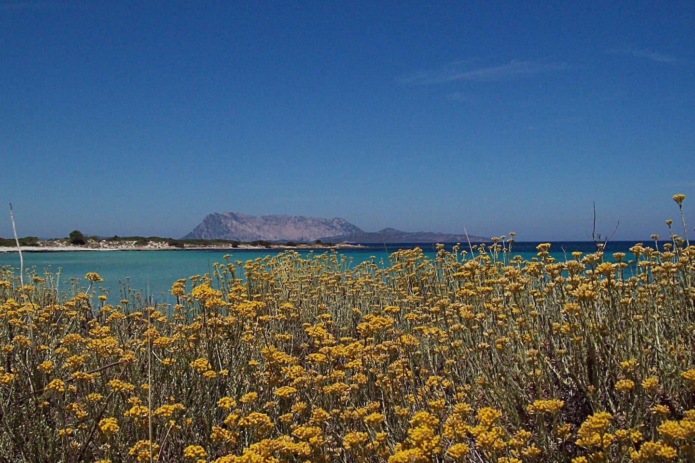 Spiaggia Isuledda.