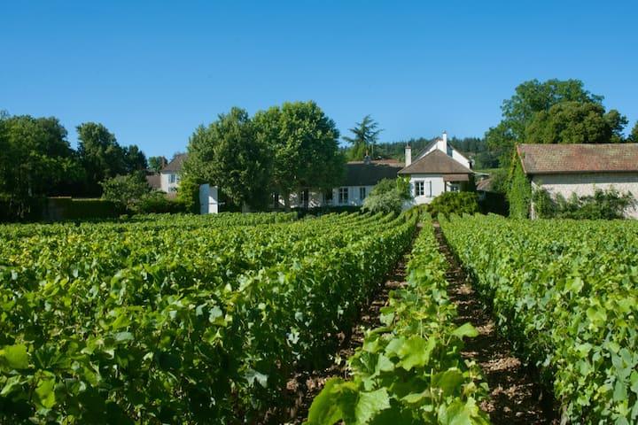 Appart Clos Laurent + parc et vignes Mercurey