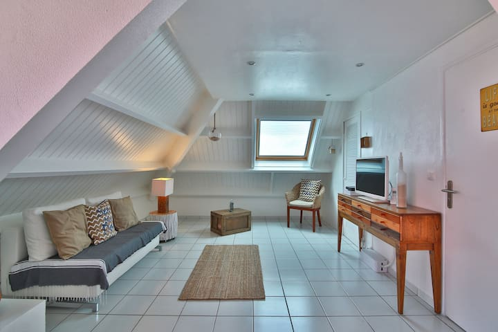 Sunshine house 1 Bedroom + mezzanine Apt - Marigot - Apartament