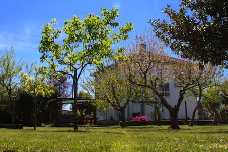 Casa vacacional A Grela - Catoira - House