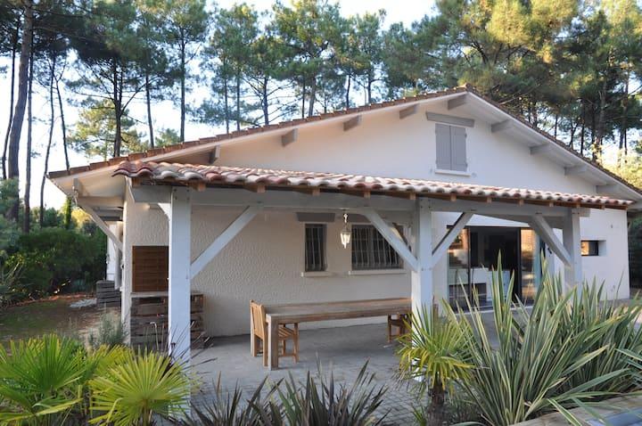 Très belle villa spacieuse avec piscine chauffée côté sud de Lacanau - 265715