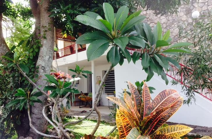 Charming tropical flat in the heart of Nouméa - Apartments for ...