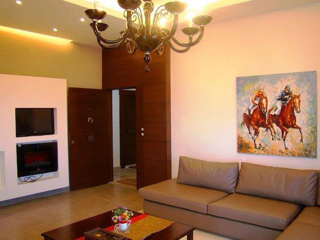 1- furnished  apartment in downtown jbeil