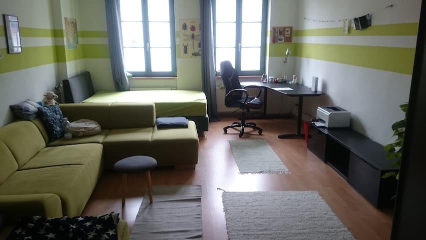 Großes, gemütliches Zimmer in Stadtfeld Ost - Magdeburg - Wohnung