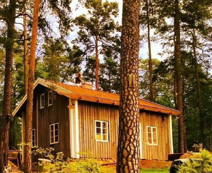 Beautiful cottage, idyllic nature, near StockholmC