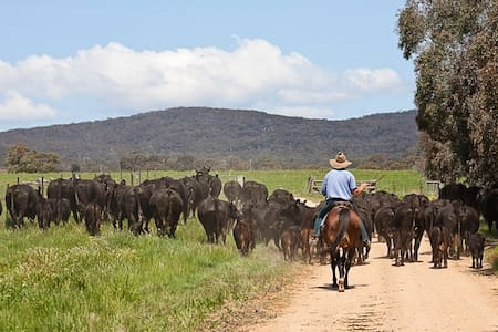 Butmaroo Station  Farm Stay - Bungendore - Rumah