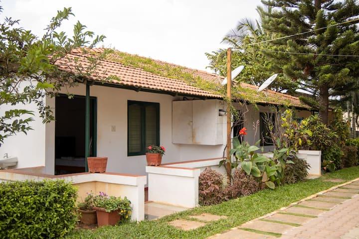 Kadackal Farms - Alphonso, Hivehomes, Bangalore