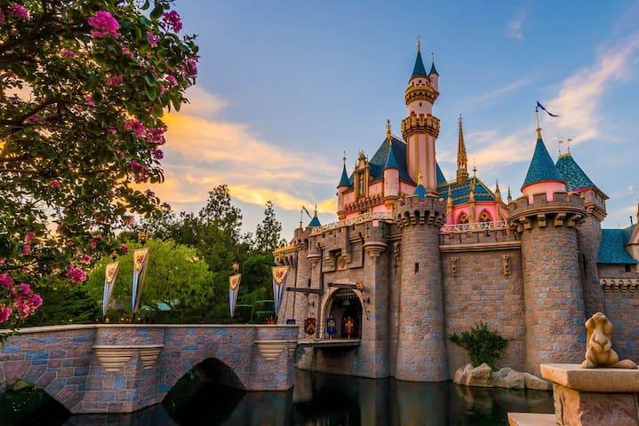 Luxury 2BR/2BA 10min to Disney-E