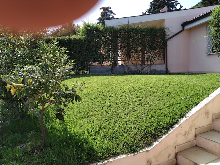 La casa nel verde 2
