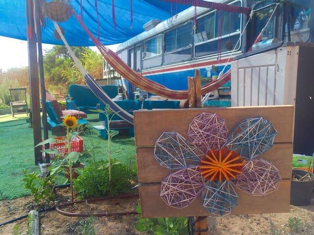 Magical bus near beach - Rishpon - Apartemen