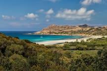 La plage de sable fin de L'Ostriconi (18km & 25mn) avec parking gratuit. La porte du désert des Agriates.