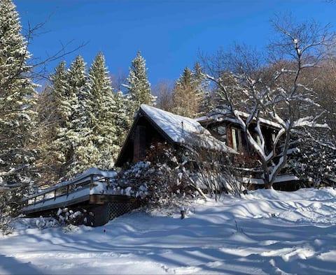 Catskills Lodge