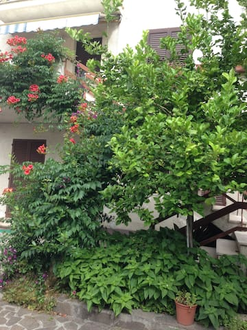 House near the beach in a quiet location - Pescara - Appartement