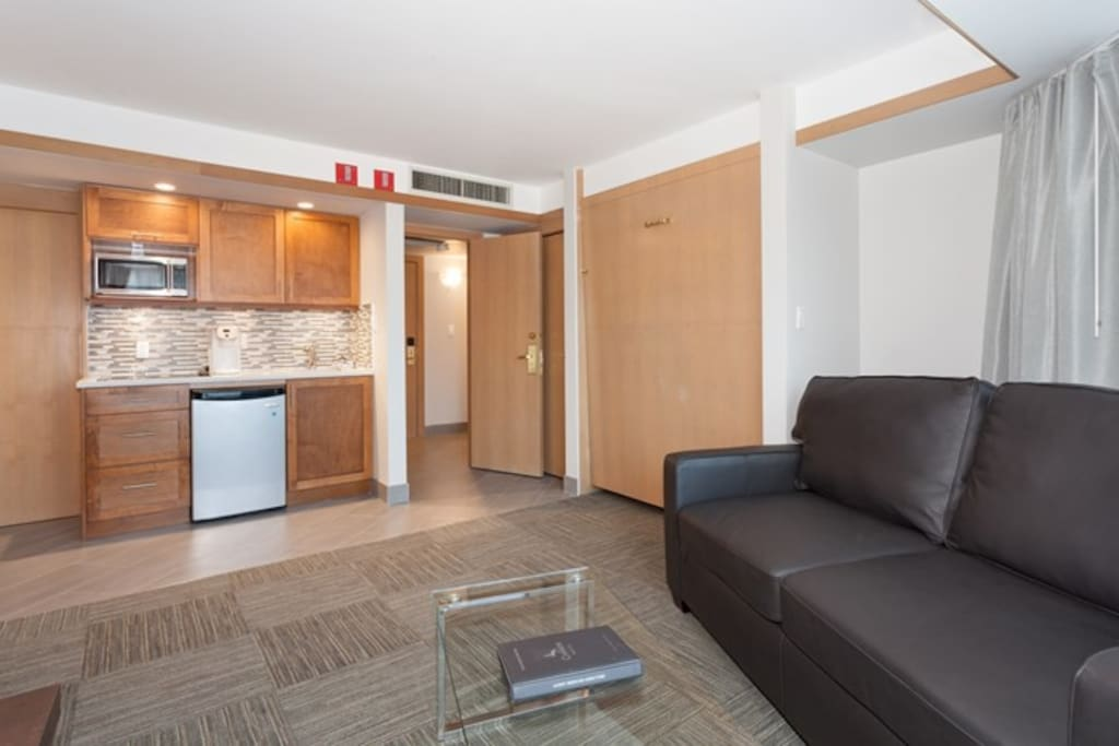 The spacious living area has a kitchenette and a pull-out murphy bed.
