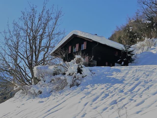 Ferienhaus Schnider