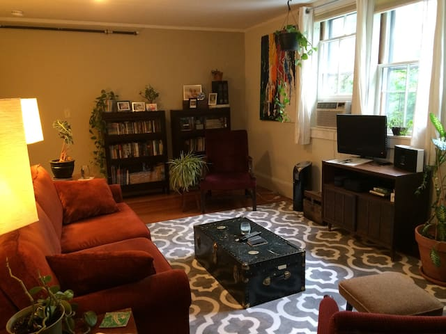 Charming Noho Apt with Lots of Comforts - Northampton