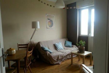 Appartement lumineux et calme - Thionville - Leilighet