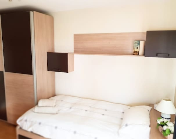 Bedroom with 2 Comfortable Beds and a Spacious Closet