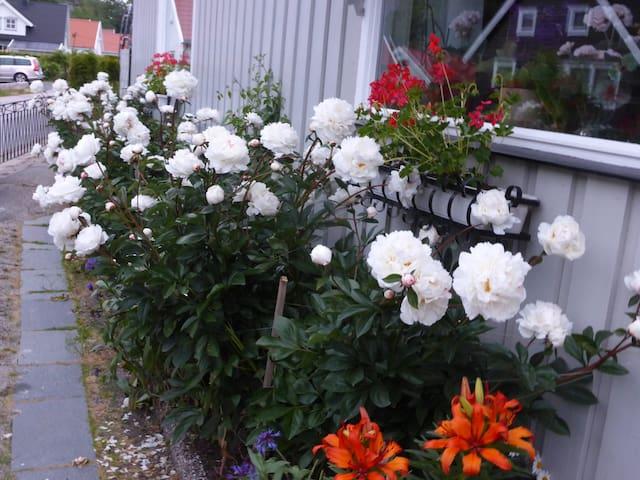 Solvikveien på Gressvik - Fredrikstad - Apartamento