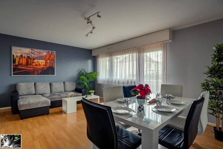 Spacious flat in Schiltigheim