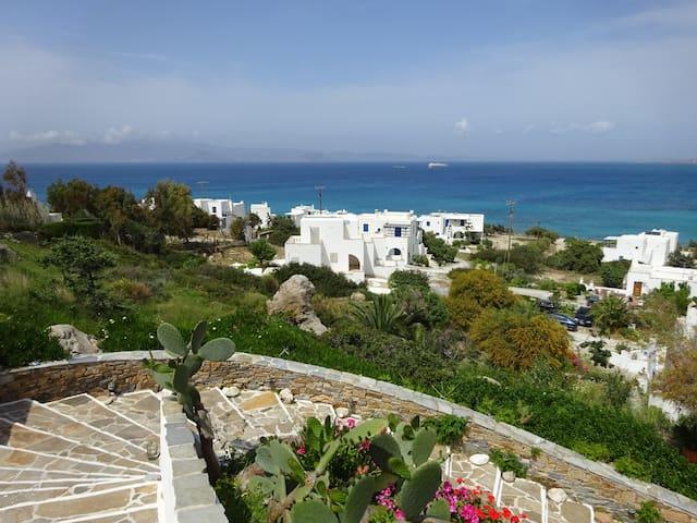 Studio Naxos  Orkos plage